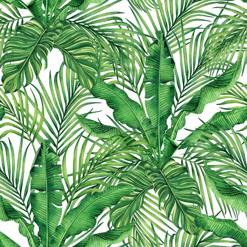 Watercolor painting coconut,banana,palm leaf,green leave seamless pattern background.Watercolor hand drawn illustration tropical e royalty free illustration