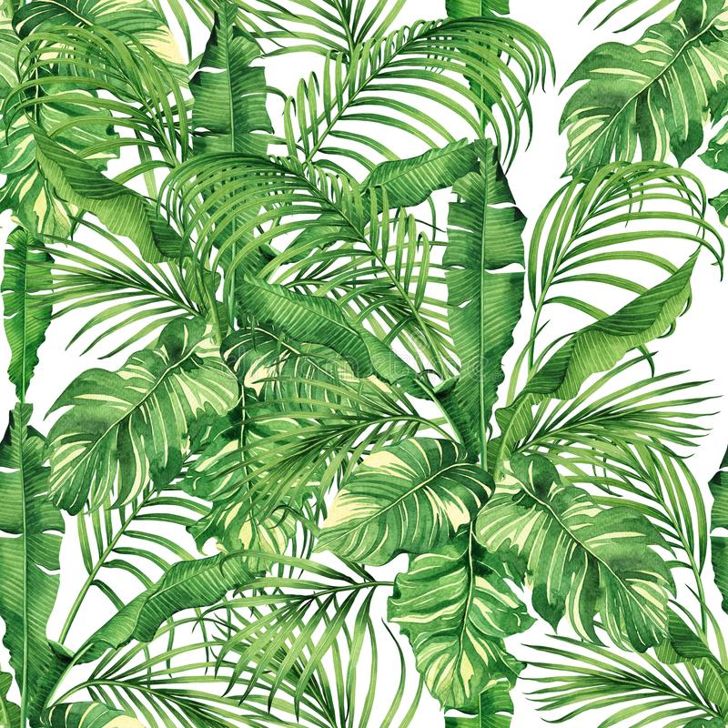 Watercolor painting coconut,banana,palm leaf,green leave seamless pattern background.Watercolor hand drawn illustration tropical e. Xotic leaf prints for royalty free illustration