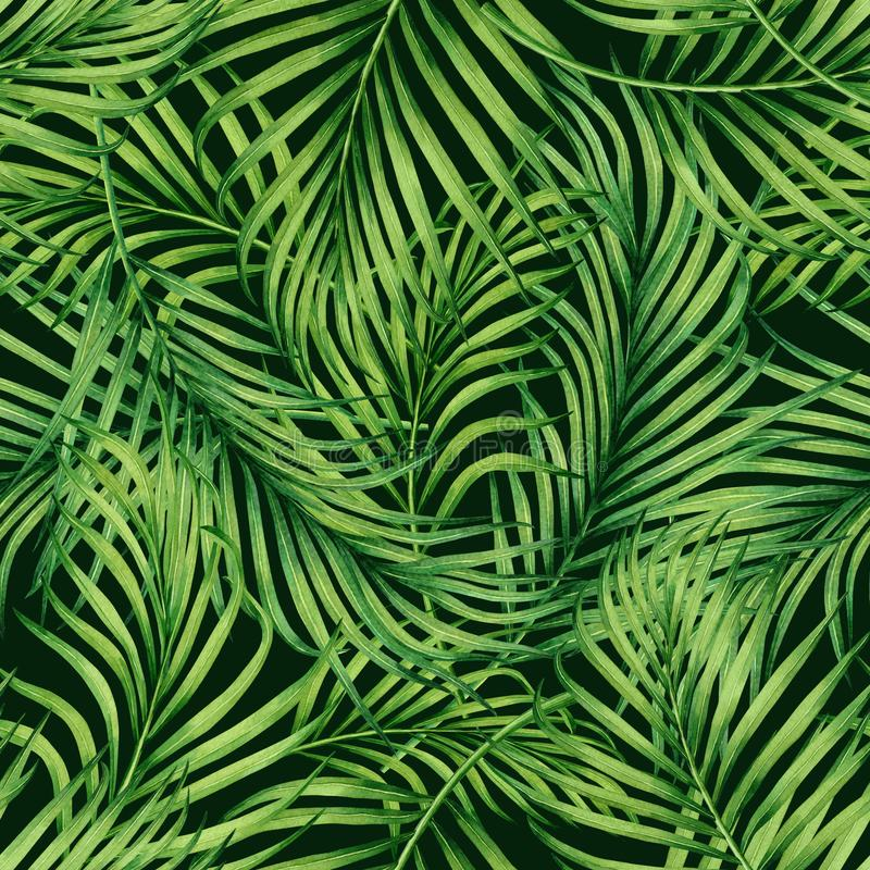 Watercolor painting coconut,palm leaf,green leave seamless pattern background.Watercolor hand drawn illustration tropical exotic l royalty free illustration
