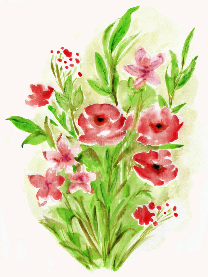 Watercolor painting flowers poppies stock images