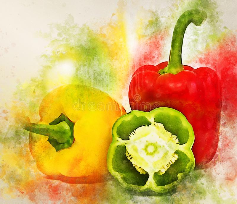 Watercolor painting of group of various paprika royalty free stock photography
