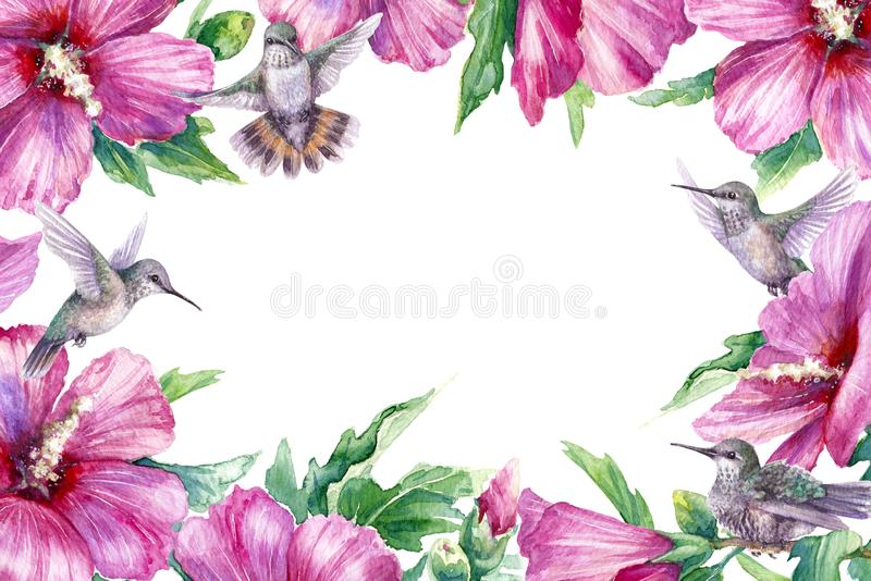Floral Frame with Humming Birds and Pink Flower royalty free illustration