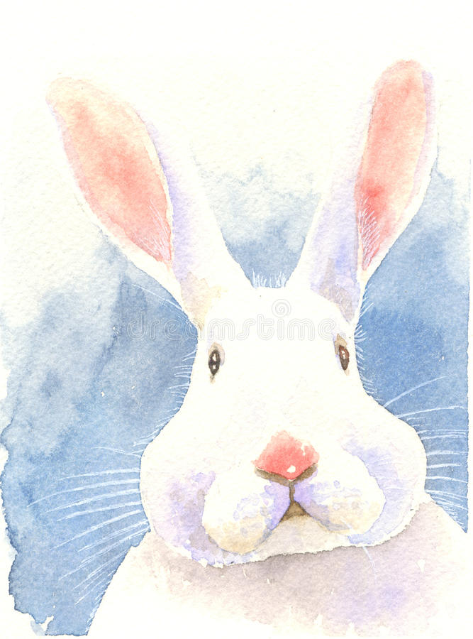 Watercolor painting illustration puzzled bunny royalty free illustration
