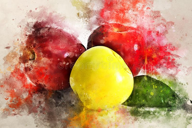 Watercolor painting of juicy ripe apples. Still life royalty free illustration