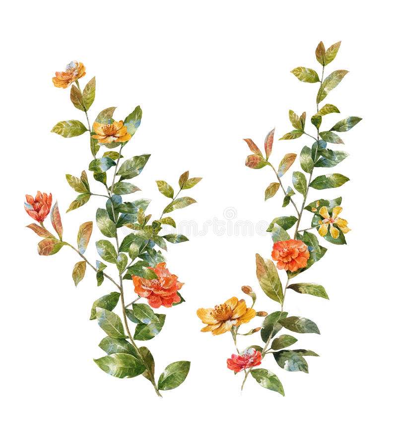 Watercolor painting of leaves and flower royalty free illustration