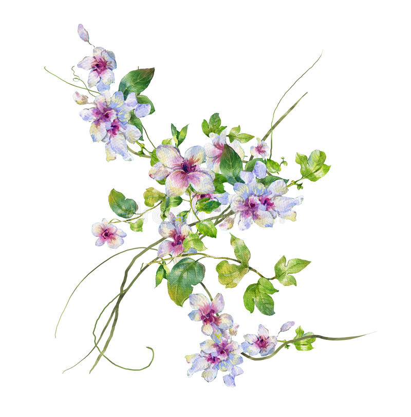 Watercolor painting of leaves and flower vector illustration