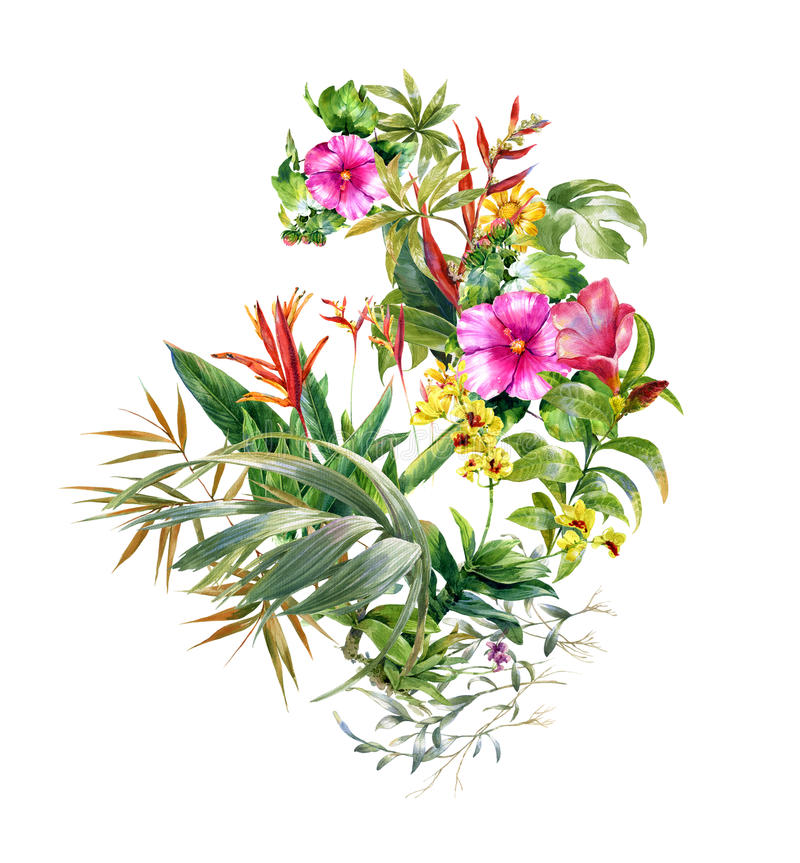 Watercolor painting leaves and flower, on white background. Watercolor painting of leaves and flower, on white background stock illustration