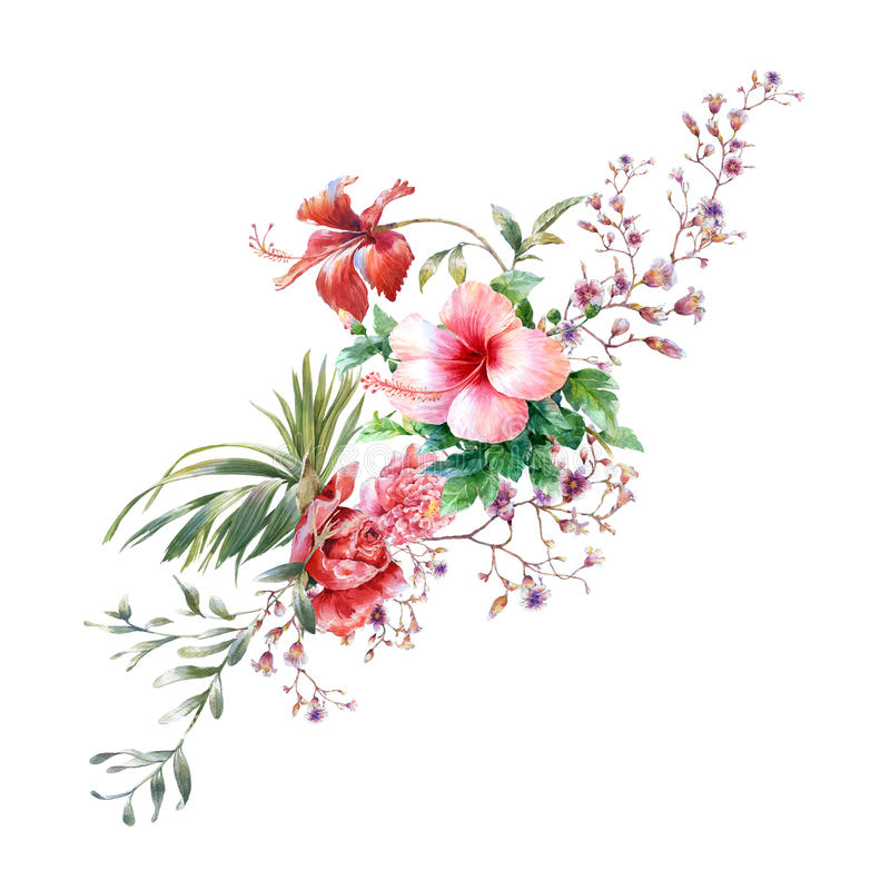 Watercolor painting of leaves and flower, on white background. vector illustration