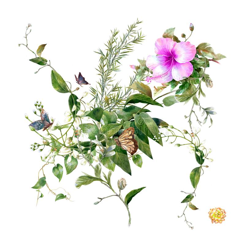 Watercolor painting of leaves and flower, on white stock illustration