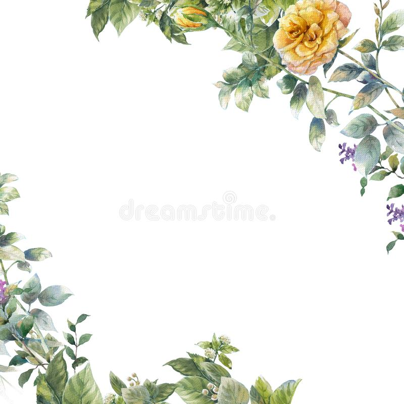 Watercolor painting of leaves and flower, on white background. royalty free illustration