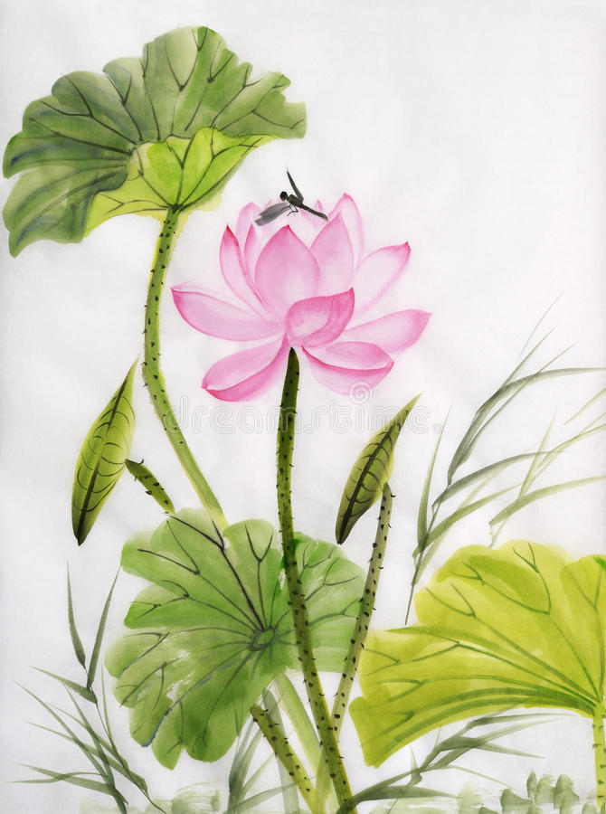 Watercolor painting of lotus flower vector illustration