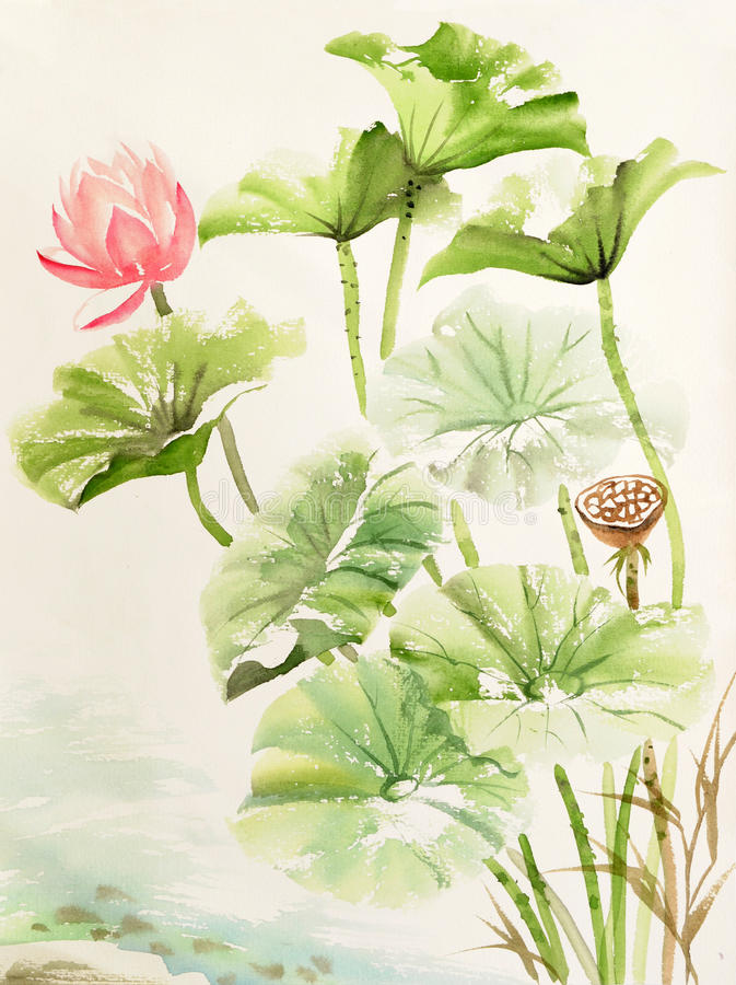 Watercolor painting of lotus leaves and flower royalty free illustration