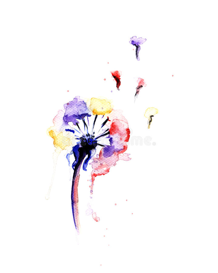 Watercolor painting of a multicolor dandelion stock illustration
