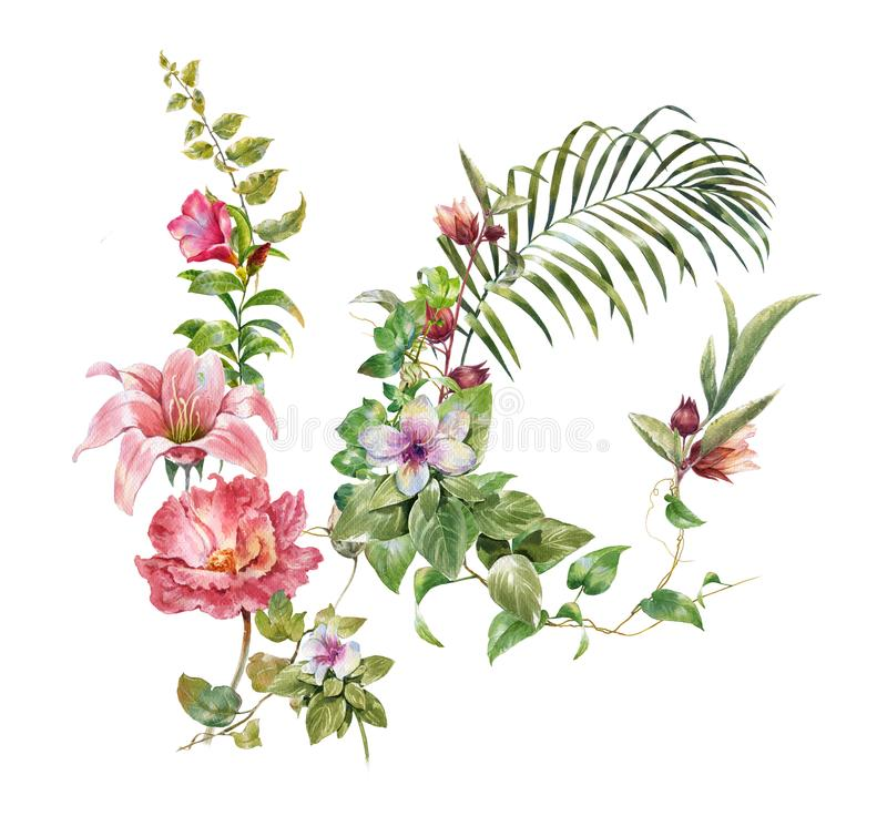 Free Watercolor Painting Of Leaves And Flower, On White Stock Photography - 113544332