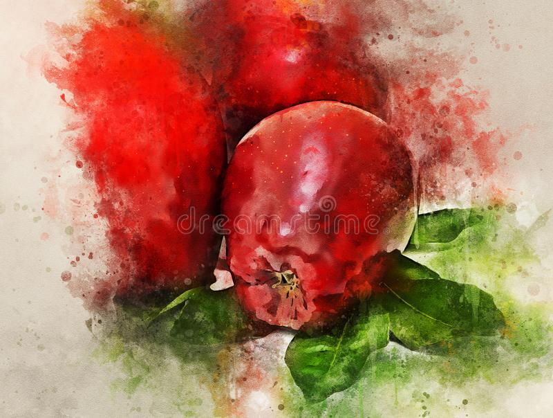 Watercolor painting of red apples isolated on white background stock illustration