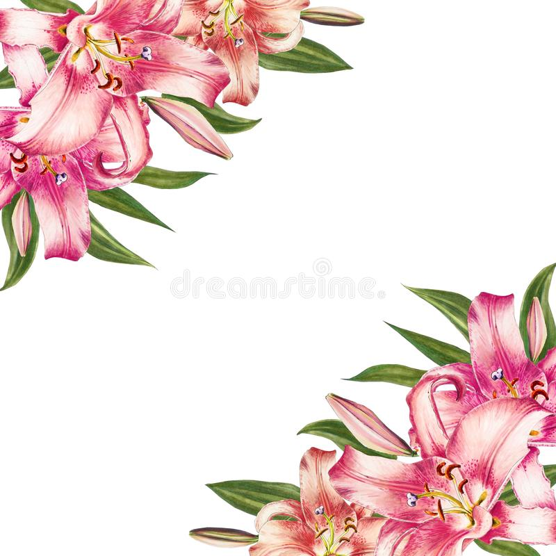 Beautiful pink lily corner frame. Bouquet of flowers. Floral print. Marker drawing. royalty free illustration