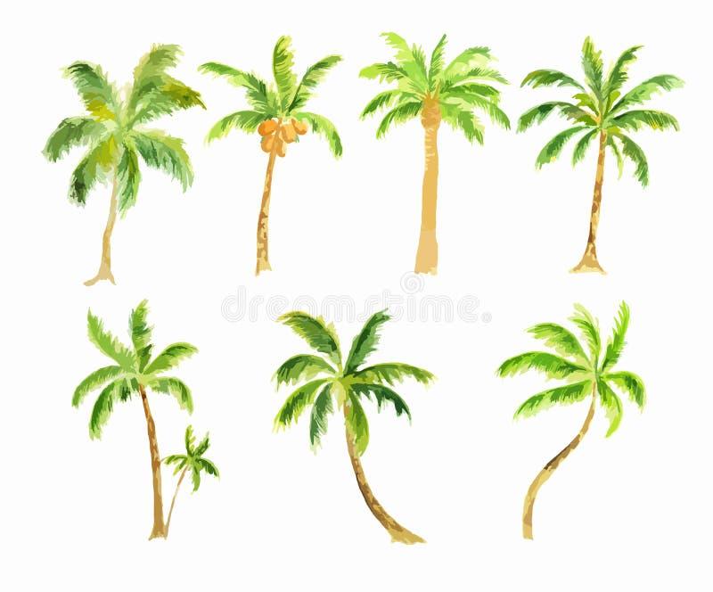Watercolor palm set. vector illustration