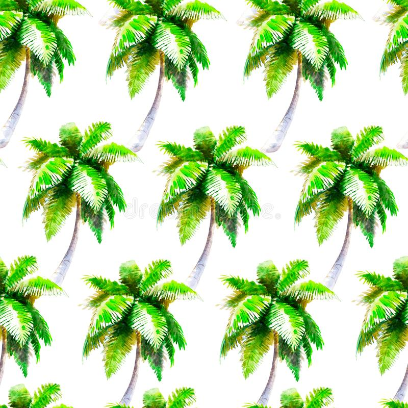 Watercolor palmtree seamless pattern, bright hand-drawn background. royalty free illustration