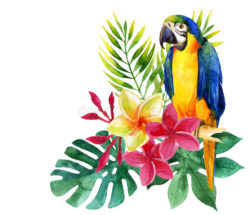 Watercolor parrot with exotic flowers and leaves stock illustration