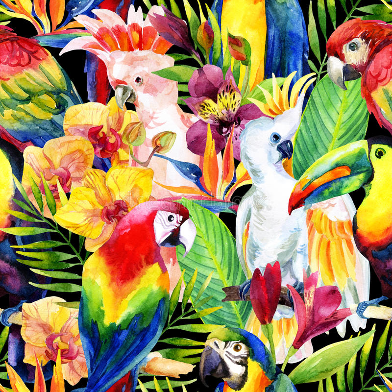 Watercolor parrots with tropical flowers seamless pattern vector illustration