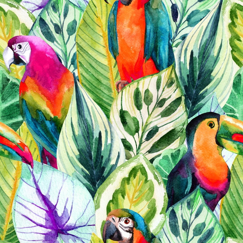 Watercolor parrots and tropical leaves seamless pattern. Watercolor parrots seamless pattern on tropical leaves background. Hand painted illustration with vector illustration