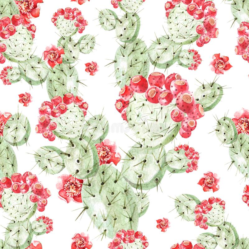 Watercolor pattern with cactus . royalty free illustration