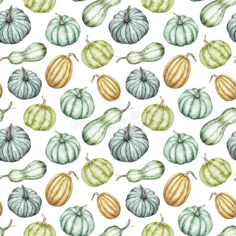 Watercolor pattern of colorful pumpkins. Autumn background. Thanksgiving, Halloween botanical illustration. vector illustration