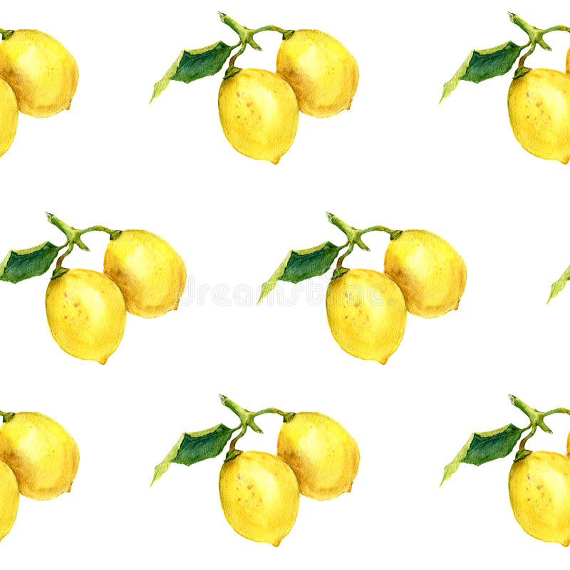 Watercolor pattern with lemons. Botanical illustration stock illustration