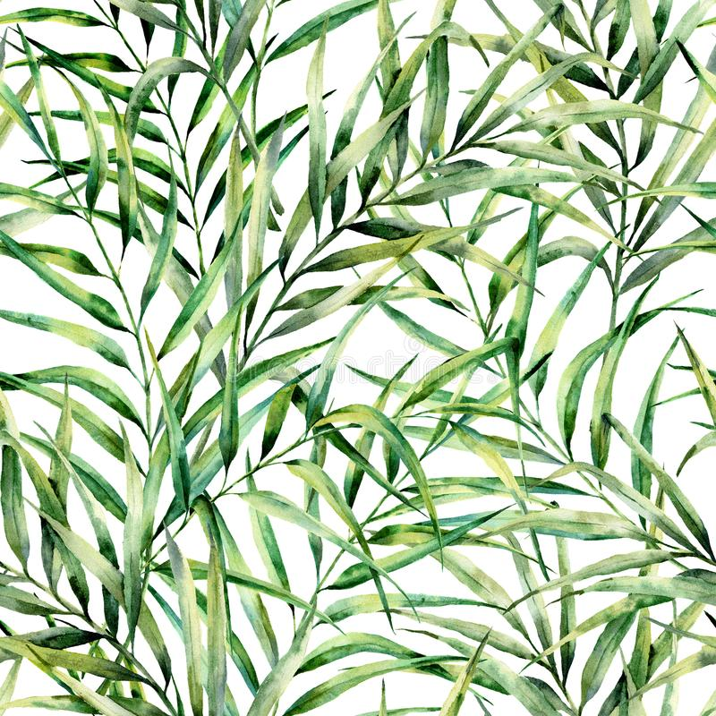 Watercolor pattern with magnificent palm tree leaves. Hand painted exotic greenery branch. Botanical illustration. For. Design, print or background stock illustration