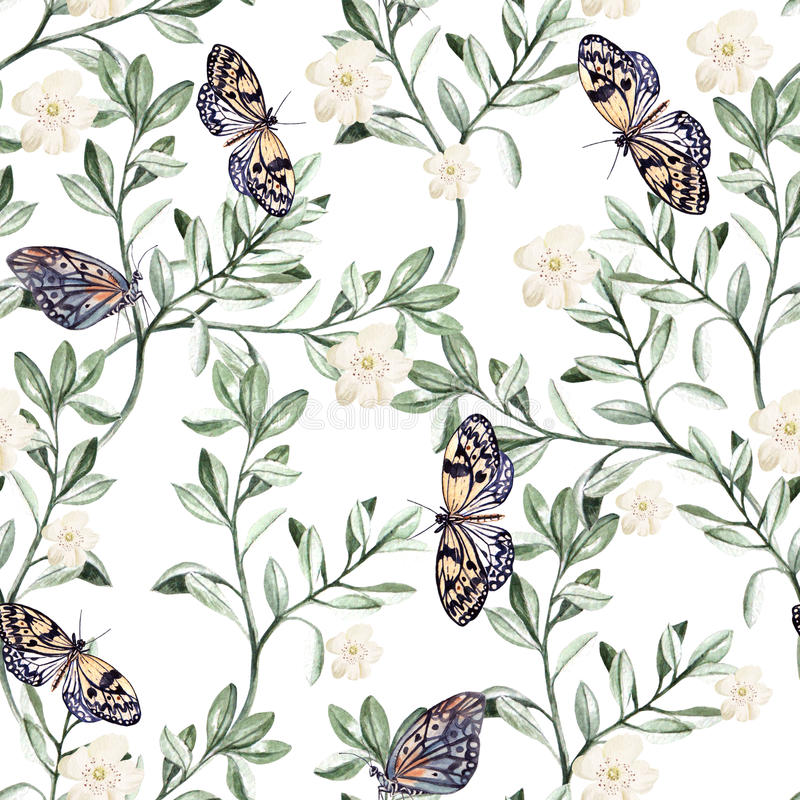 Watercolor pattern with plants and butterflies. Illustration royalty free illustration