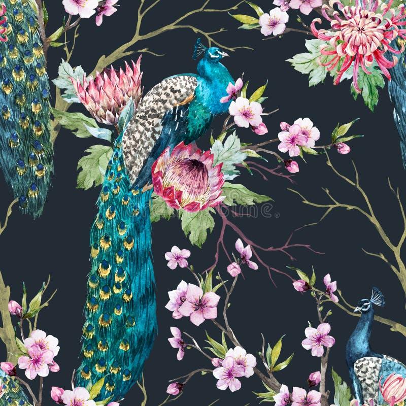 Watercolor peacock pattern stock illustration