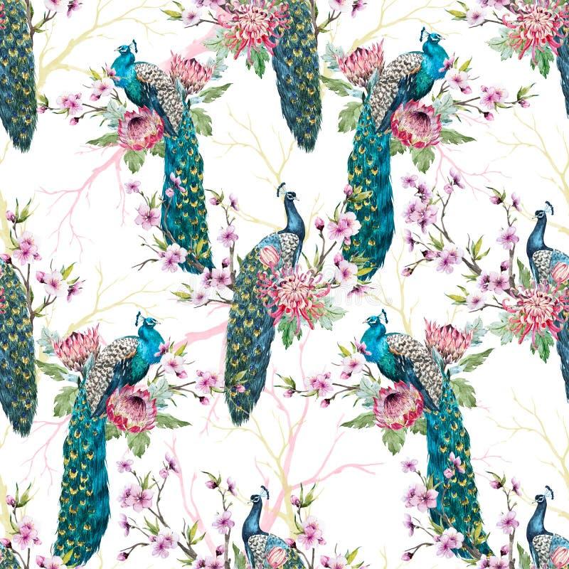 watercolor peacock pattern stock illustration illustration of