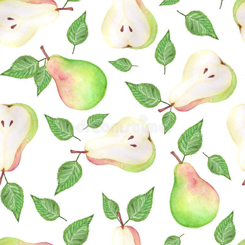 Watercolor pears seamless pattern. Hand drawn pattern. Abstract background Design of organic food. Surface background. Isolated background Cloth design. White royalty free illustration