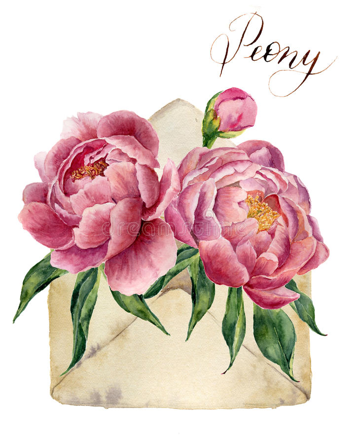 Watercolor peonies bouquet with retro envelope. Vintage mail icon with floral illustration on white background. Hand pain stock illustration