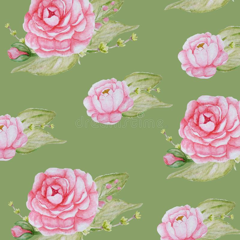 Watercolor Peony Flowers pattern, Pink Peonies texture, Romantic Scrapbook paper on green background vector illustration