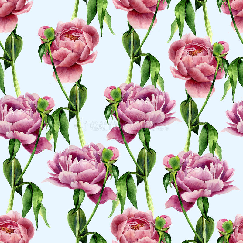 Watercolor peony flowers seamless pattern on blue background. Floral texture for design, textile and background. Botanical stock illustration