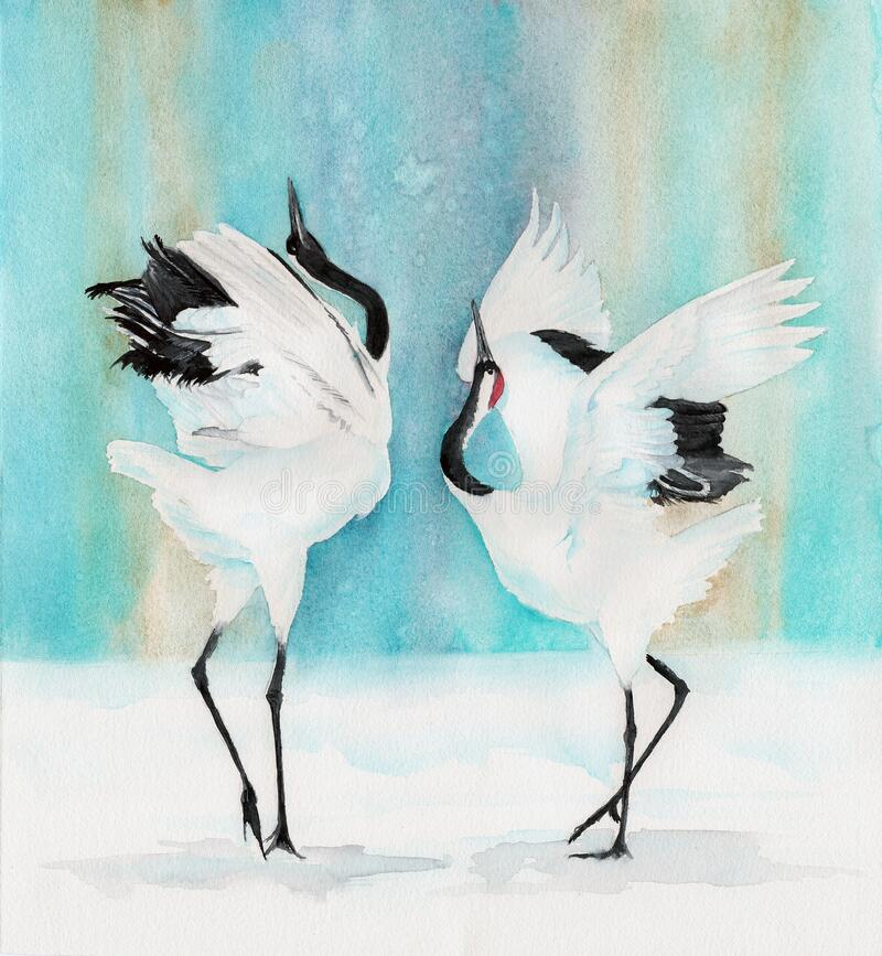 Free Watercolor Picture Of A Two Red-crowned Cranes Stock Photo - 170713990