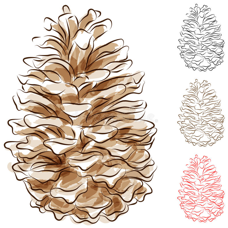 Download Watercolor Pine Cone stock vector. Image of clipart, watercolor - 23483653