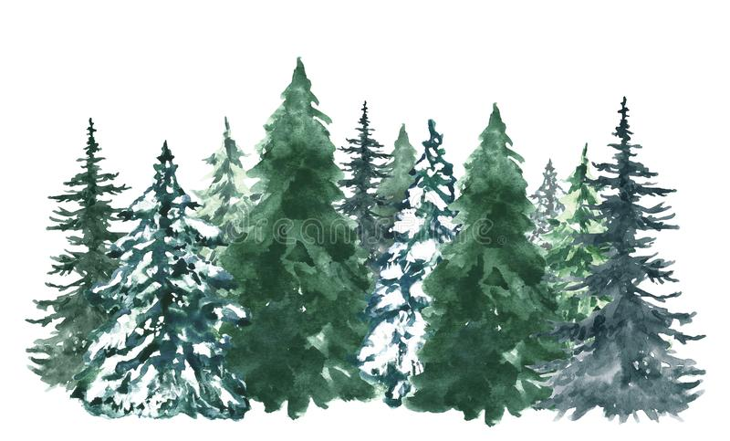 Watercolor pine trees background. Banner with hand painted evergreen forest, isolated. Snow winter wonderland illustration royalty free stock photo