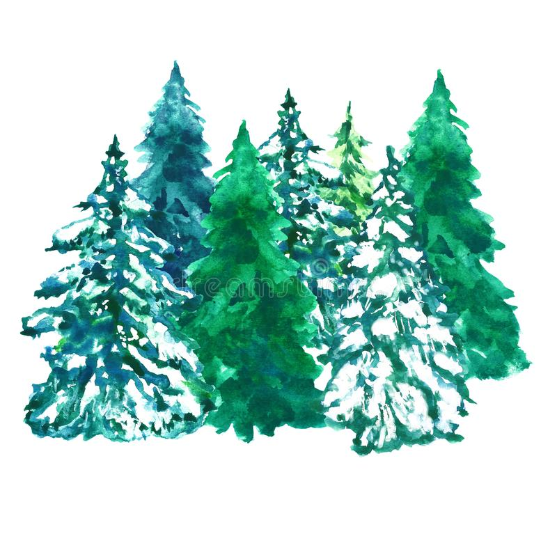 Watercolor pine trees illustration, isolated on white background. Winter spruce forest for banners, cards, holiday design royalty free stock photos