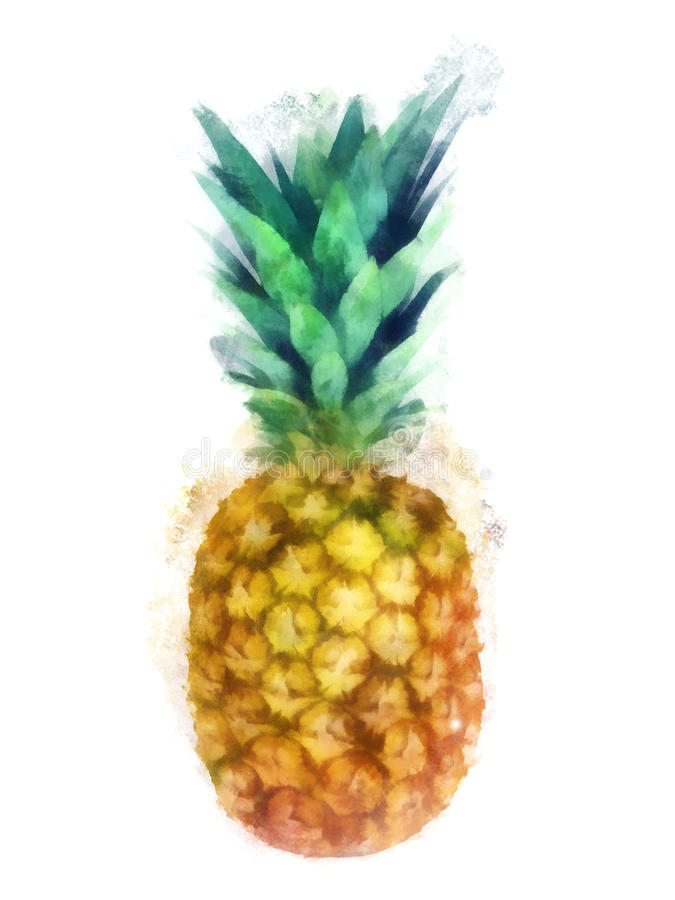 Watercolor pineapple royalty free illustration