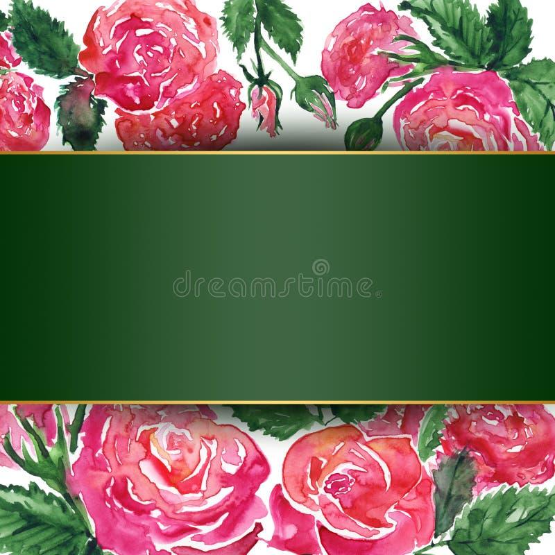 Watercolor pink crimson red rose peony flower floral composition frame border template sample background stock illustration