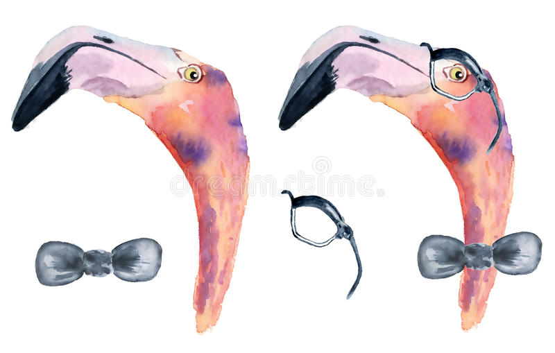 watercolor pink flamingo with bow tie and glasses royalty free illustration
