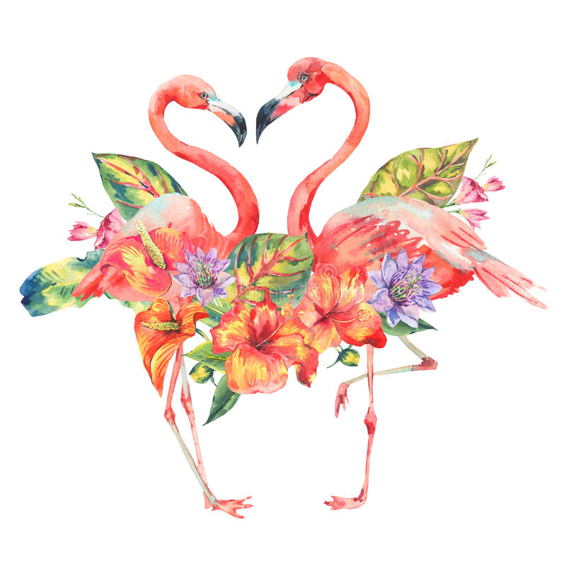Watercolor pink flamingo and tropical flowers vector illustration