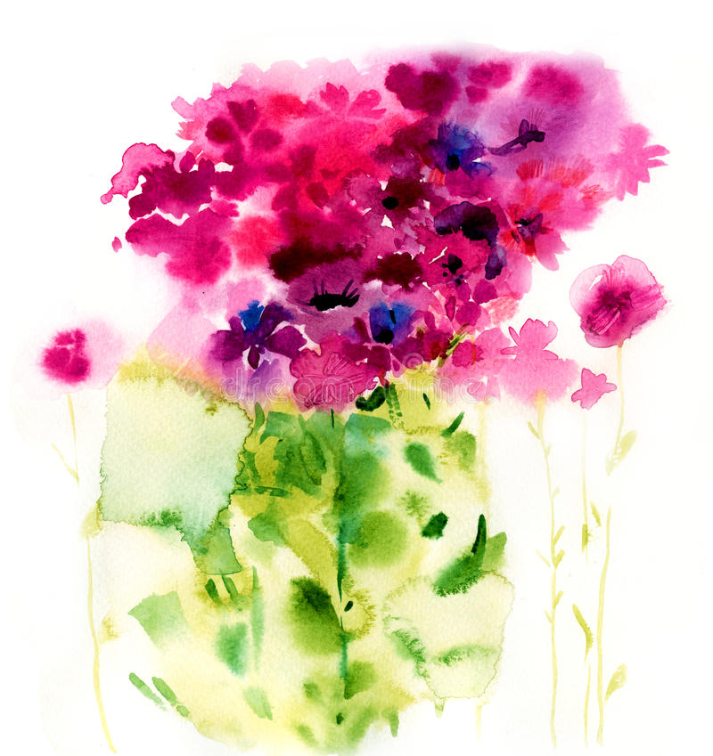 Watercolor pink flowers on a white background. Botanical illustration vector illustration