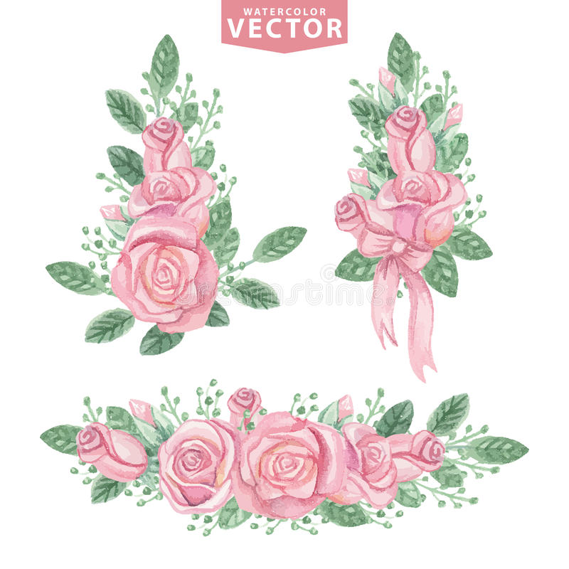 Watercolor pink roses compositions.Cute vintage royalty free illustration