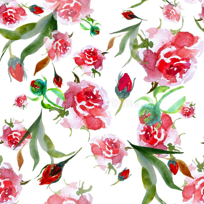 Watercolor pink roses seamless pattern. Floral illustration on white. royalty free illustration