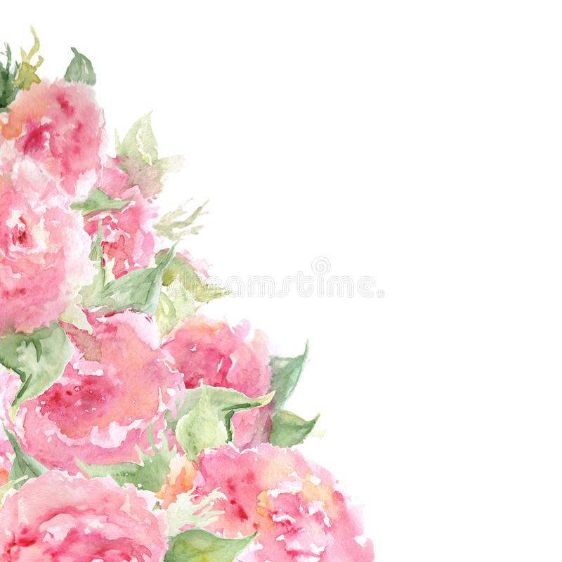 Watercolor pink tea rose peony flower floral composition frame background template isolated.  stock illustration