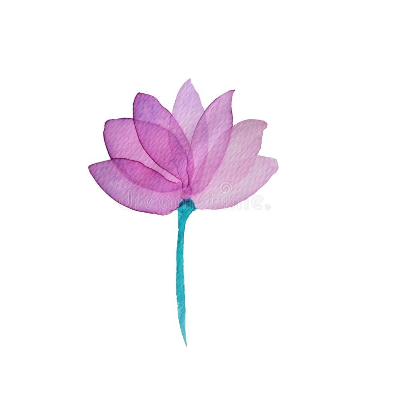 Watercolor pink transparent layered pink Flower on white background vector illustration