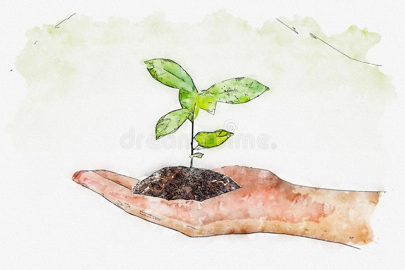 Watercolor of plant in the hand on green background royalty free illustration